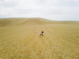 黄色の写真・画像素材[603487]
