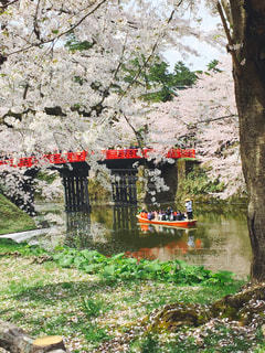近くに池のアップ - No.798335