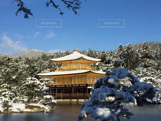 雪の金閣寺の写真・画像素材[1016407]