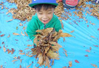 帽子をかぶった小さな男の子の写真・画像素材[868950]