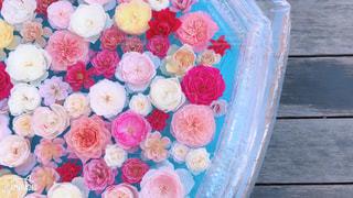 花のように作られたケーキの写真・画像素材[1560856]