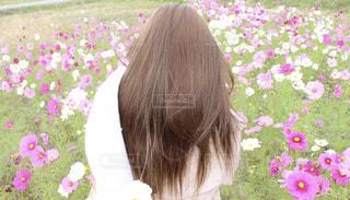 花の前に立っている人の写真・画像素材[1585352]