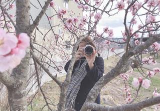 木の隣に立っている人の写真・画像素材[1864587]