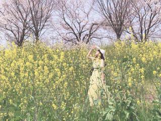 女性の写真・画像素材[2003303]