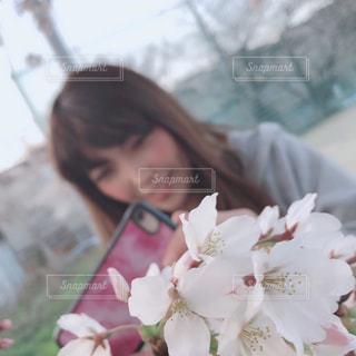 女性,公園,花,自撮り,桜,屋外,植物,スマホ,セルフィー