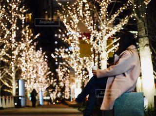 女性,1人,風景,夜,夜景,屋外,後ろ姿,光,樹木,イルミネーション,人,座る,明るい