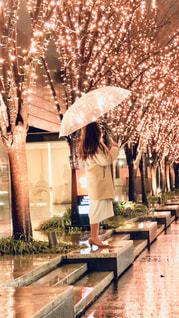 女性,1人,風景,雨,傘,大阪,樹木,イルミネーション,並木,並木道,天気,グランフロント大阪