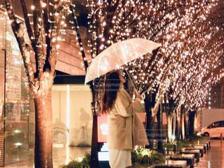 女性,1人,風景,冬,夜,雨,傘,屋外,大阪,樹木,イルミネーション,人,並木,並木道,天気,グランフロント大阪