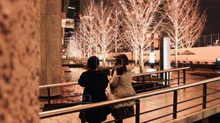 女性,友だち,2人,風景,冬,夜,大阪,後ろ姿,樹木,イルミネーション,都会,人,明るい,友達,通り,グランフロント大阪