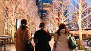 女性,3人,風景,夜,屋外,大阪,後ろ姿,樹木,イルミネーション,都会,人,照明,明るい,通り,グランフロント大阪