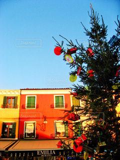 冬,クリスマス,イタリア