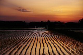 夕日のビューの写真・画像素材[957049]