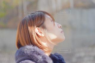 ふんわりつややかの写真・画像素材[1610464]