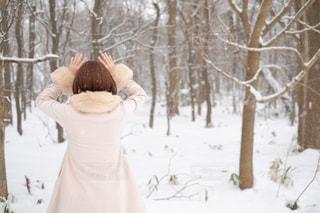 女性,30代,自然,森林,木,屋外,白,コート,北海道,樹木,人物,ポートレート,ホワイト,ホワイトカラー