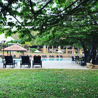 プール,旅,ホテル,海外旅行,スリランカ,シーギリヤ,アマヤ