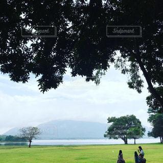 芝生,湖,散歩,旅,ホテル,海外旅行,スリランカ