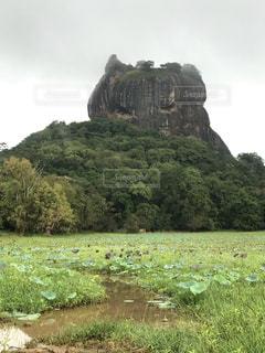 自然,空,屋外,緑,草原,世界遺産,草,岩,旅,スリランカ,シーギリヤロック