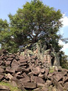 自然,風景,空,屋外,樹木,岩,旅行,遺跡,石,カンボジア,ベンメリア