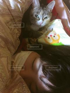 猫,添い寝,熱,風邪,インフルエンザ,ツーショット,看病