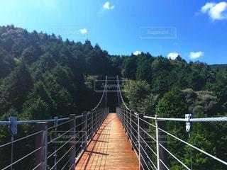 ワイヤー フェンスに架かる橋 - No.772477
