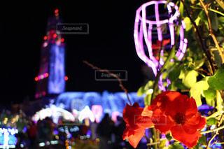 テーブルの上の花の花瓶 - No.896008