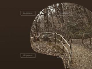 トンネルの中からの写真・画像素材[3019066]