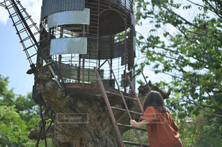 ハシゴを登る女の子の写真・画像素材[4378283]