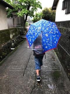 子ども,雨,傘,道路,水たまり,男子,梅雨,天気,ビニール傘,雨の日,カサ