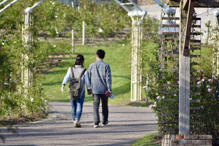 恋人,2人,自然,風景,LOVE,カップル,ペア,後ろ姿,散歩,仲良し,夫婦,愛,ラブ,family,nature,ツーショット
