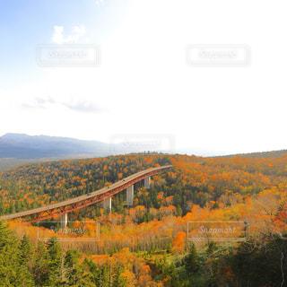 丘の上の橋 - No.796210