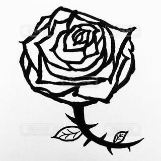 花の写真・画像素材[526160]