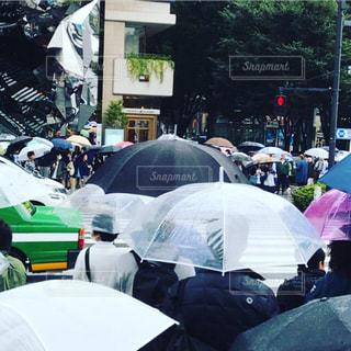 傘だらけですの写真・画像素材[813389]