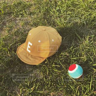 緑とベースボールとベースボールキャップの写真・画像素材[1157612]