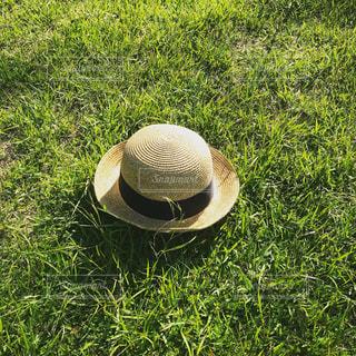 麦わら帽子の写真・画像素材[1197367]