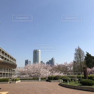 渋谷区西原