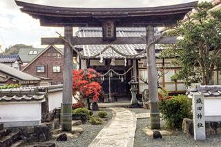織田神社の写真・画像素材[877096]