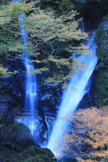 森の中の滝の写真・画像素材[877098]