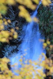 滝の写真・画像素材[877101]