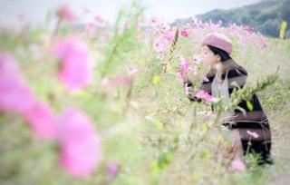 花と女性の写真・画像素材[912649]