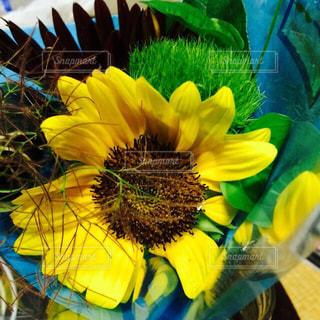 夏,ひまわり,花束,プレゼント,お祝い
