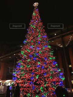 冬,ヨーロッパ,旅,クリスマス,ツリー,ドイツ,クリスマスマーケット