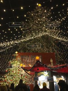 冬,きれい,ヨーロッパ,イルミネーション,キラキラ,旅行,クリスマス,ドイツ,ケルン,クリスマスマーケット