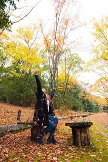 紅葉の落ち葉と私。の写真・画像素材[840459]