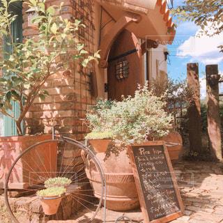 建物の前でベンチに座って花の花瓶 - No.775535