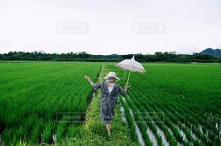 緑豊かな緑のフィールドに立っている人の写真・画像素材[1329850]