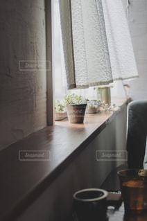 テーブルの上の植物の写真・画像素材[2184282]