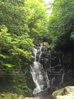白糸の滝 - No.858145
