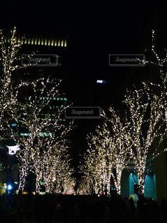 東京 - No.576377