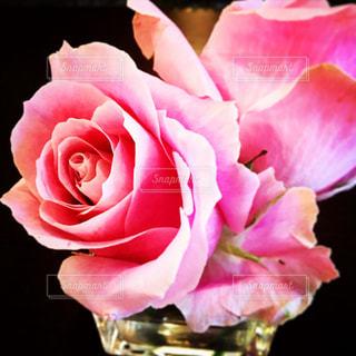 花を持っている手 - No.855805