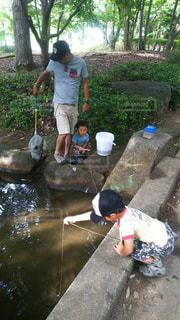 子ども,夏,川,仲良し,虫,釣り,夏休み,兄弟,ザリガニ,虫捕り,ファザー